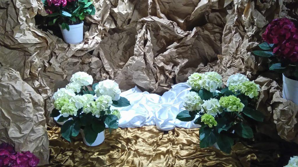 Christus resurrexit a mortuis!